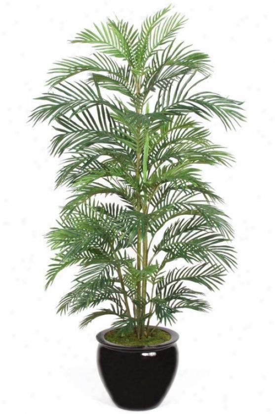 """luau Creca Pa1m Topiary - 60""""h, Green"""