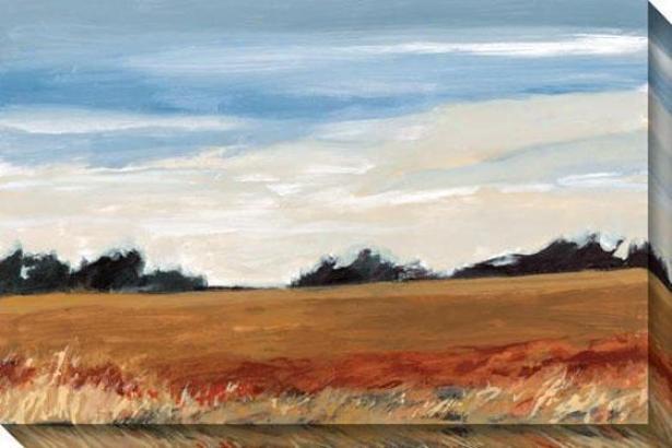 Meadow Ii Canvws Wall Art - Ii, Gold