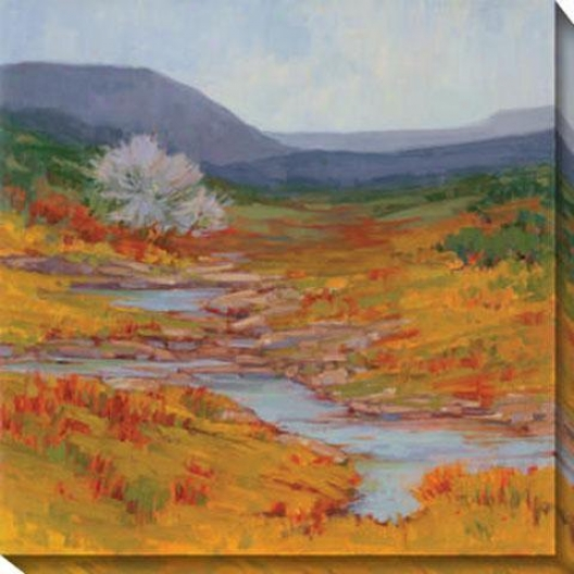Mountain Stream Ii Canvas Wall Art - Ii, Gold