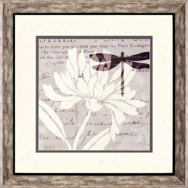 Natural Prints Framed Wall Art Collection - Ii, Beige
