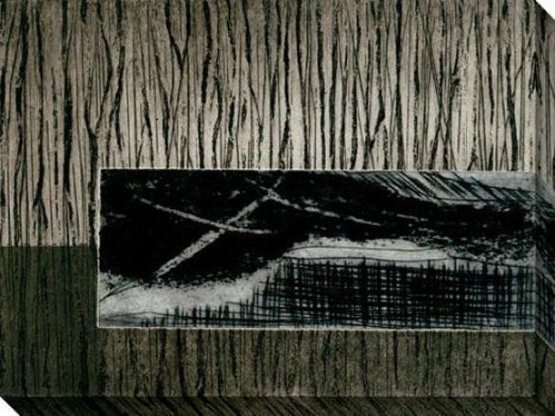 Nest Series Iii Canvas Wall Art - Iii, Black