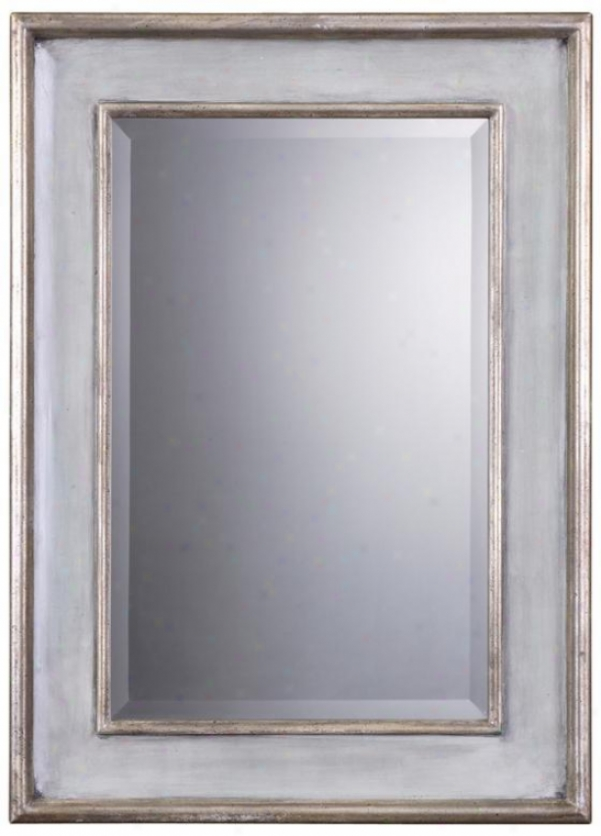 """ogden Mirror - 37""""hx27""""w, Light Pedantic """