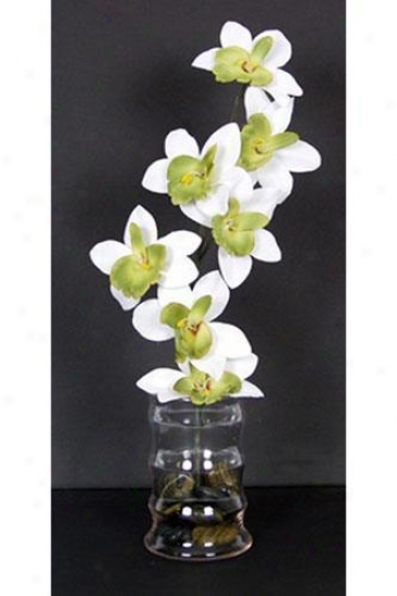 """""""orchid Floral Arrangement - 15""""""""hx6""""""""d, White"""""""