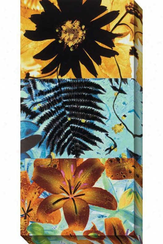 Petals And Leaves Ii Canvas Wall Art - Ii, Yello