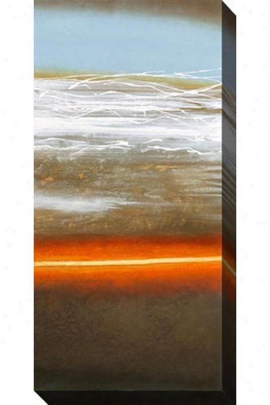 Planet Earth Ii Canvas Wall Art - Ii, Dark
