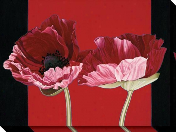 """poppies Canvas Wall Art - 36""""hx48""""w, Red"""
