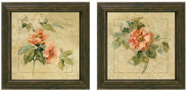 Provence Rose Framed Wall Art - Set Of 2 - Set Of Two, Cream