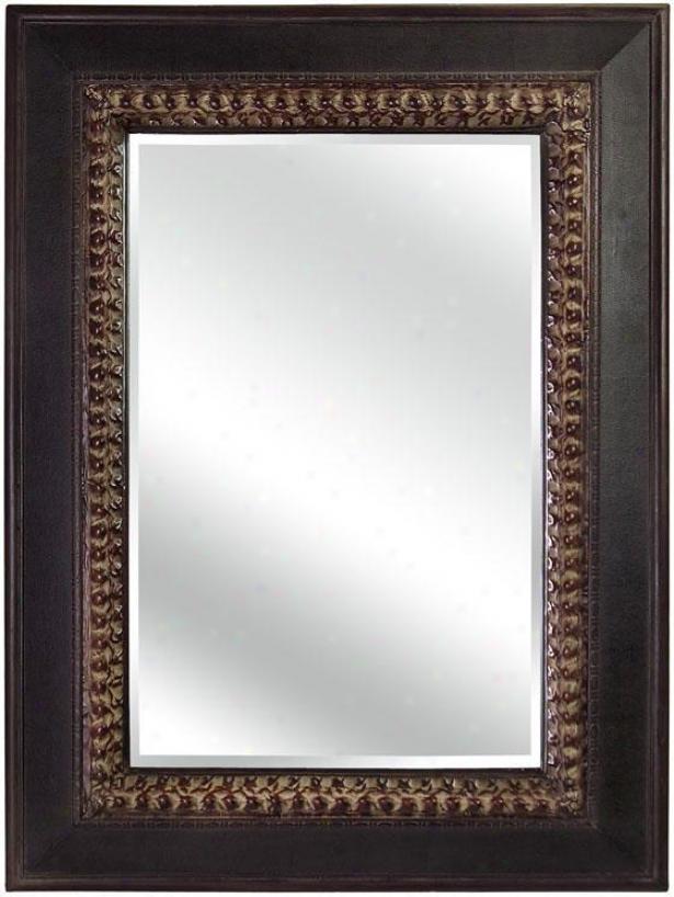"""rectangular Distressed Mirror - 49""""h X 37""""w, Brown"""