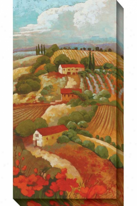 Red Tuscan Ii Canvas Wall Art - Ii, Red