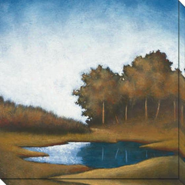 """reflecting Pond  Canvas Wall Art - 40""""hx40""""w, Blue"""
