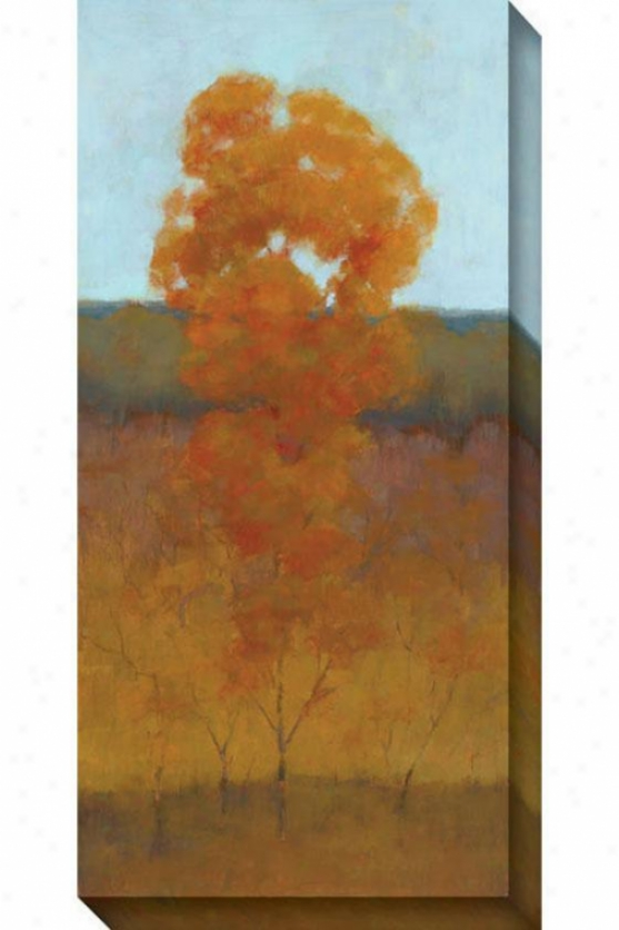 Solitary Tree Iii Canvas Wall Art - Iii, Orange