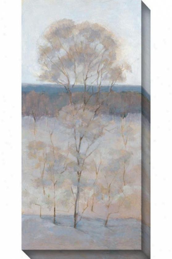 Solitary Tree Iv Canvas Wall Ar5 - Iv, Gray