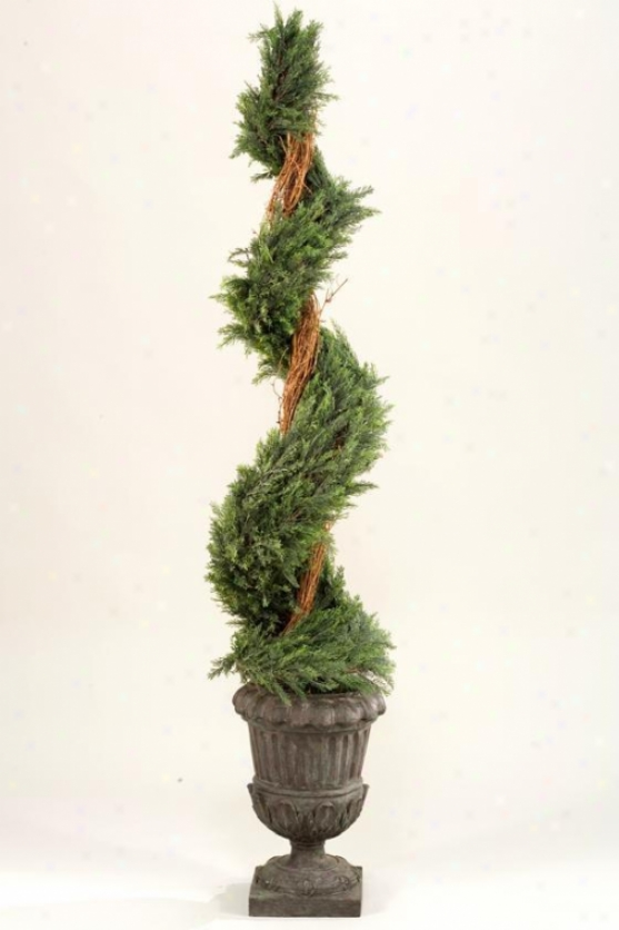 """spiral Topiary In Urn - 74""""h, Green"""