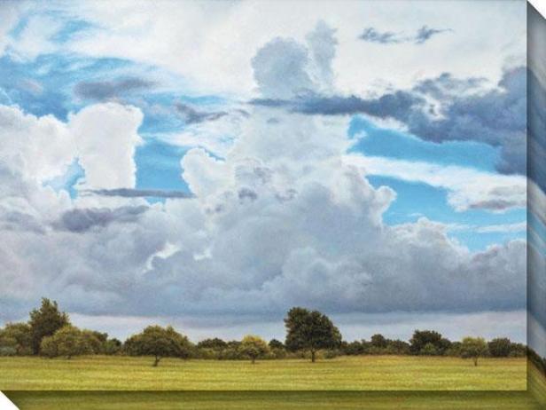 "s""pring Branch Sky Canvas Wall Art - 36""""hx48""""w, Blue"""