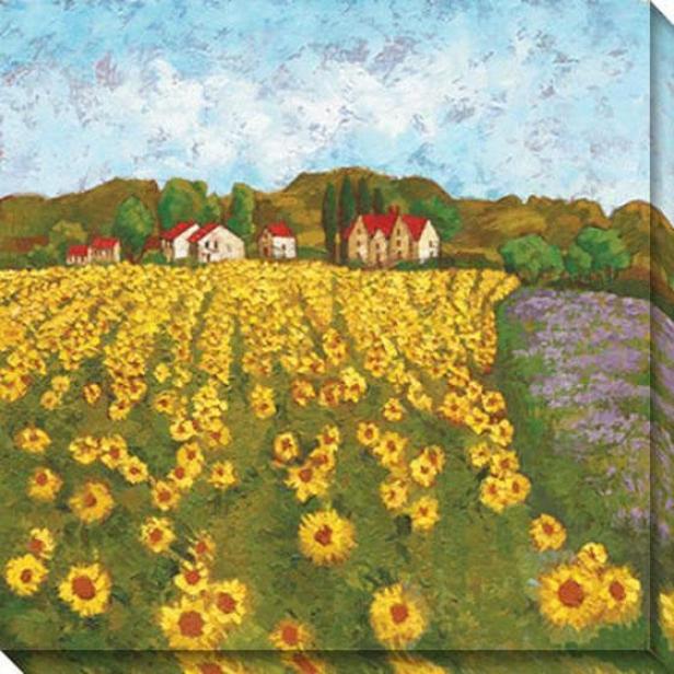 Sunflower Vista Ii Canvas Wall Art - Ii, Yekl0w