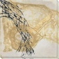 Natufe's Way Iv Canvas Wall Art - Iv, White