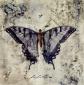Plum Delight Wall Art - Iv, Lavender