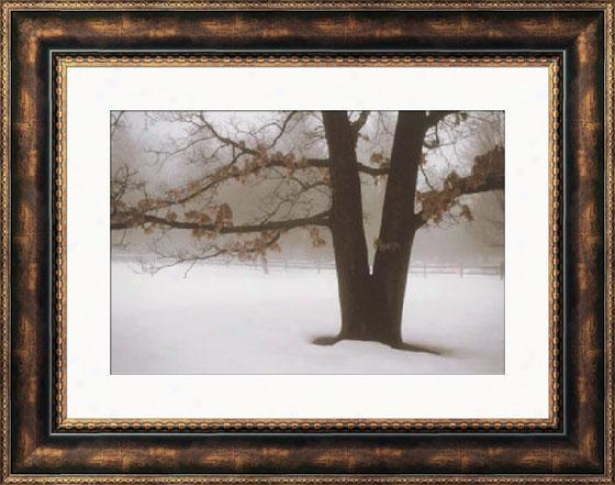 """tranquility Framed Wall Art - 28""""hx36""""w, Brown"""