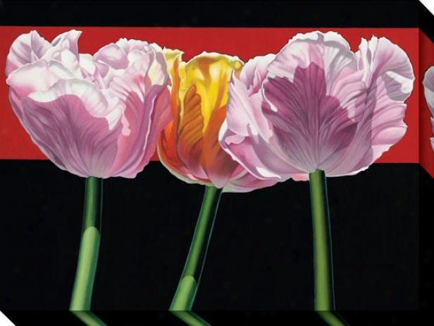 """tulips Canvas Wall Art - 36""""hx48""""w, Blck"""