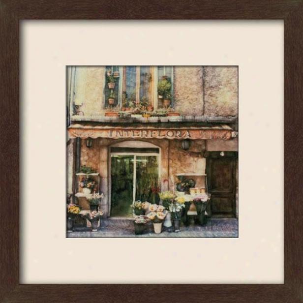 """""""vence Fleurs Framed Wall Art - 27""""""""hx27""""""""w, Matted Espresso"""""""