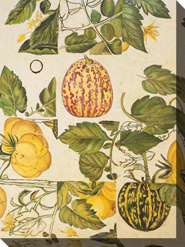 Greenness Iii Canvas Wall Art - Iiii, White
