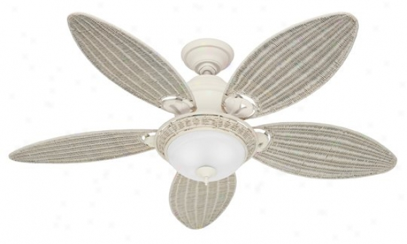 21648 - Hunter - 21648 > Ceiling Fans