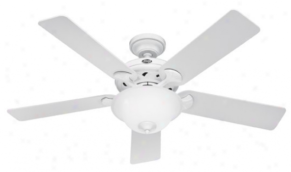 22390 - Hunter - 22390 > Ceiling Fans