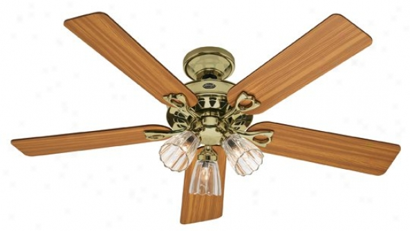 22436 - Hunter - 22436 > Ceiling Fans