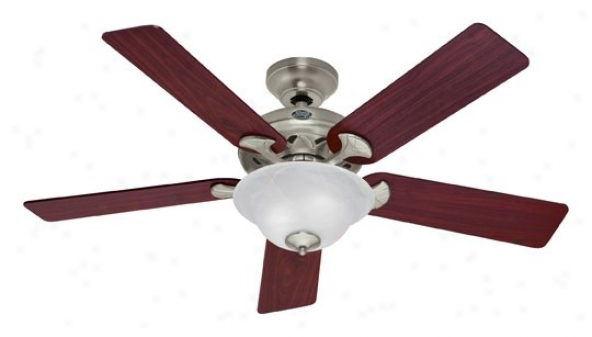 22451 - Hunter - 22451 > Ceiling Fans