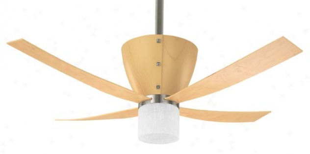 23592 - Hunter - 23592 > Ceiling Fans