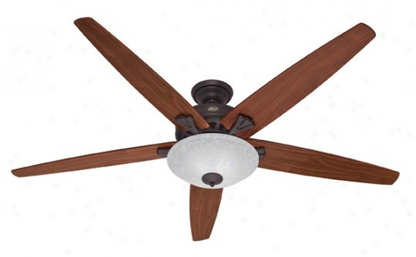 23963 - Hunter - 23963 > Ceiling Fanns