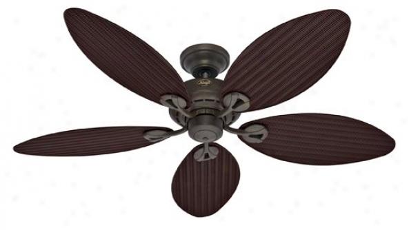 23980 - Huntwr - 23980 > Ceiling Fans