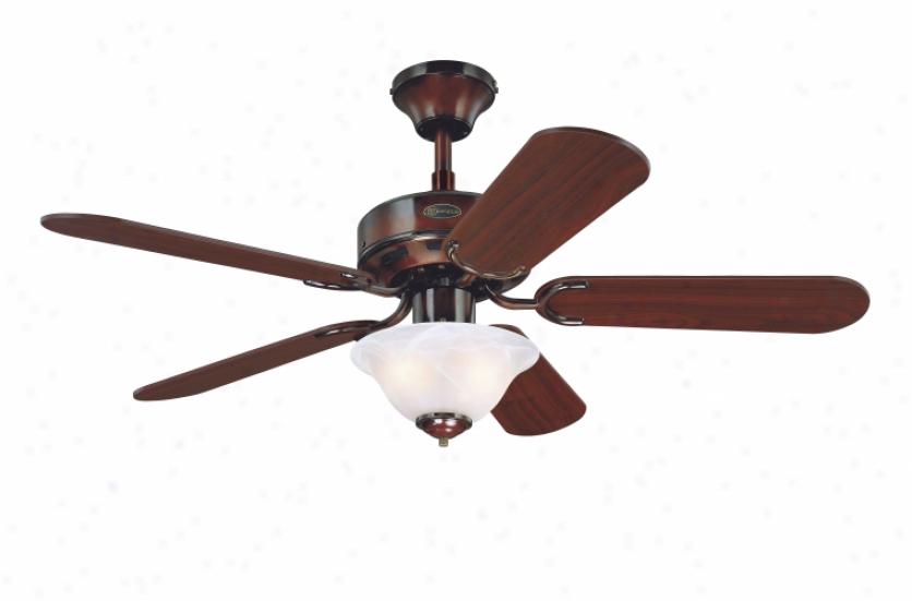7826765 - Westinghouse - 7826765 > Ceiling Fans