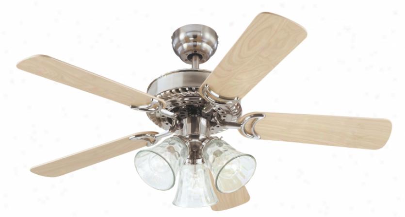 7843565 - Westinghouse - 7843565 > Ceiling Fans