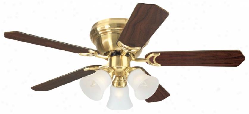 78509 - Westinghouse - 78509 > Ceiling Fans