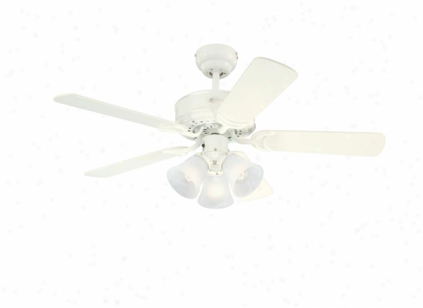 7873065 - Westinghouse - 7873065 > Ceiling Fans