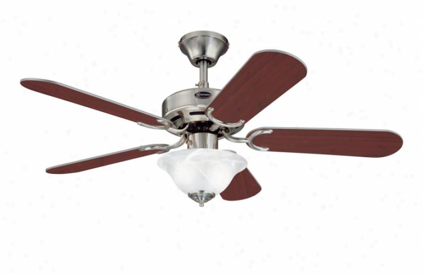 7877365 - Westinghouse - 7877365 > Ceiling Fans