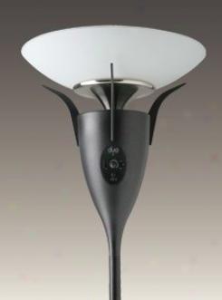 Cst01 - Casablanca - Cst01 > Torchiere Lamps