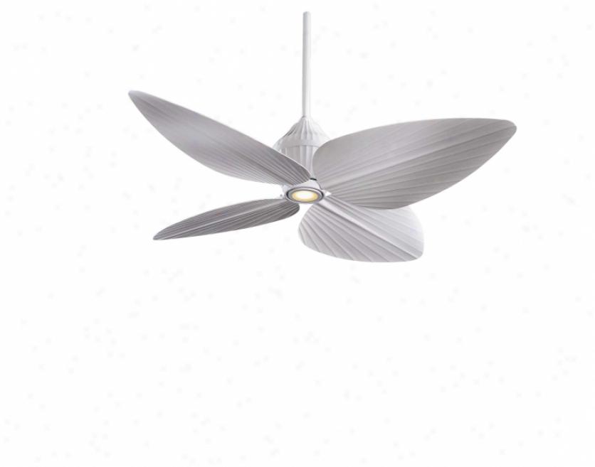 F581-whf - Minka Alre - F581-whf > Ceiling Fans