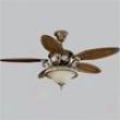 P2505-55 - Advancement Lighting - P2505-55 > Ceiling Fans
