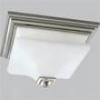 P3364-09 - Progress Lighting - P3364-09 > Flush Mount