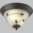 P3438-77 - Progress Lighting - P3438-77 > Flush Mount