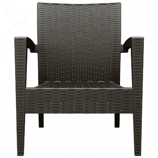 Compamia Miami Resin Wickerlook Club Chair (set Of 2)