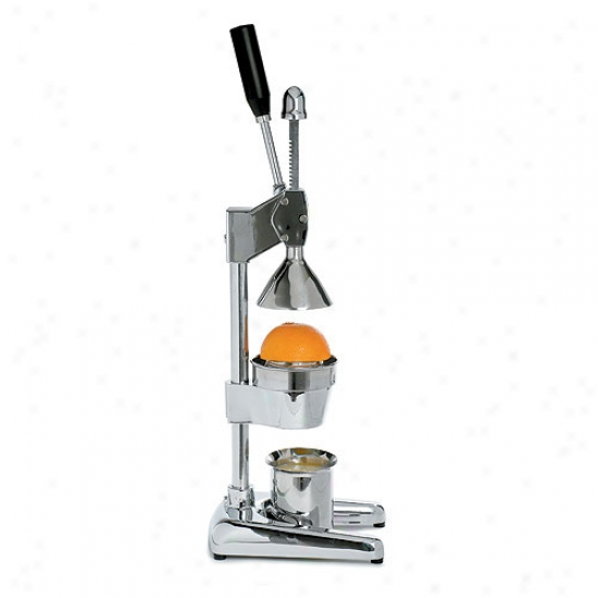 Metrokane Citrus Power Juicer