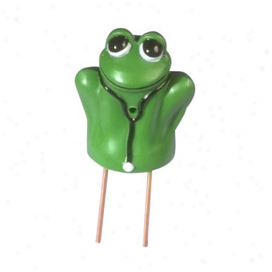 P3 International Dr. Frog? Moisture Meter