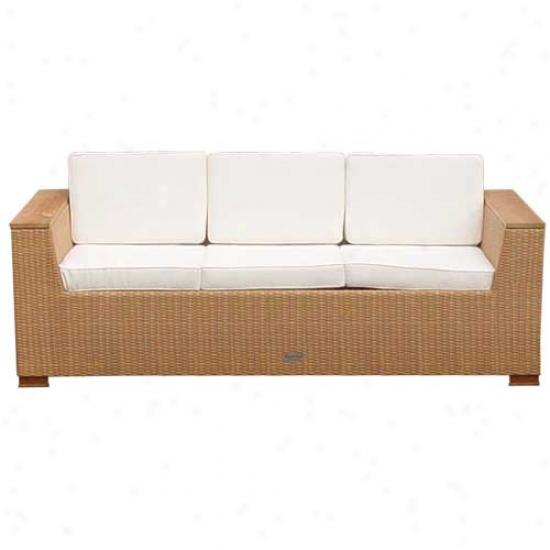 Royl Teak Collection 4 Piece Key West Twig Sofa Set - Honey