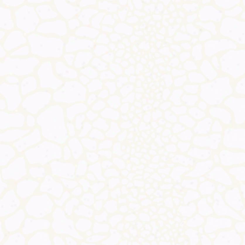 Giraffe Print White Pearl Wallpaper