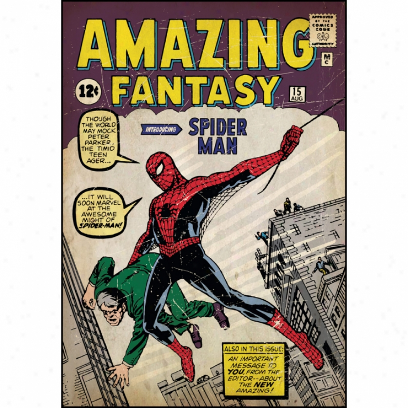 Spider-man Issue #1 Comic Cover Giant Wall Decal