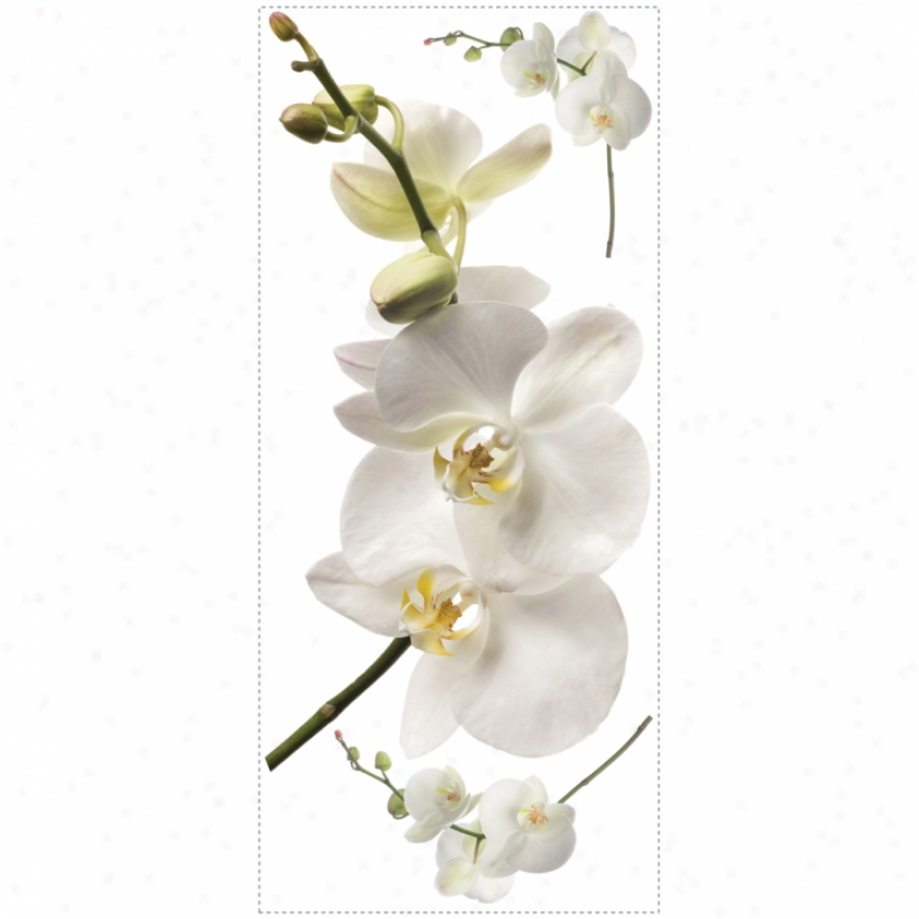 White Orchid Giant Wall Decals